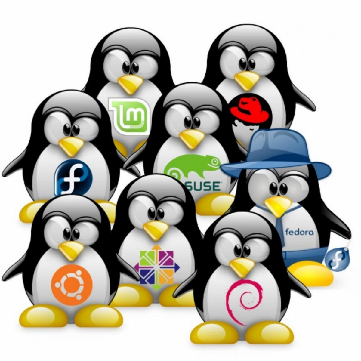 Especial Mesa Redonda : Estado actual del software libre y GNU/Linux, terminado 2017 y comenzando 2018.